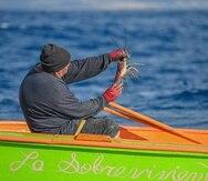 Entre los productos que más se venden en las villas pesqueras de Puerto Rico figuran el pescado pargo, arrayao, mero, peto, sierra, chillo, atún, pez espada, dorado, pulpo, langosta, carrucho, juey y la centolla.