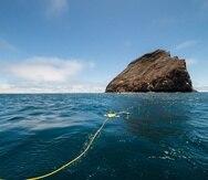 Fotografía cedida por la Fundación Charles Darwin que muestra una vista de un robot con cámara mientras analiza el fondo marino, en las Islas Galápagos.