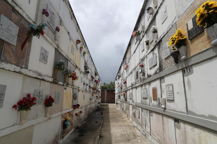 En Toa Baja, iniciaron un proceso de exhumación de cadáveres para tener espacio para nuevos enterramientos.