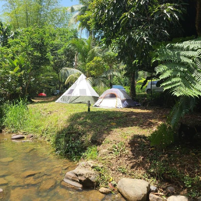 Hacienda Monte Rey Ecoturismo y Agricultura, localizada en Luquillo.