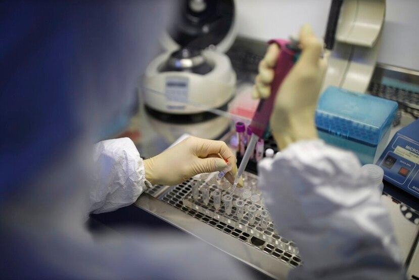 El Laboratorio Clínico Toledo, en Arecibo, se prepara para realizar pruebas de COVID-19.