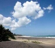 Las playas son Tropical Beach en Naguabo, Playa Cabullón en Ponce y Playa Muelle de Arecibo.