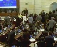 Por ahora las autoridades siguen investigando cómo ingresaron los ratones al Senado. (Captura / Video)