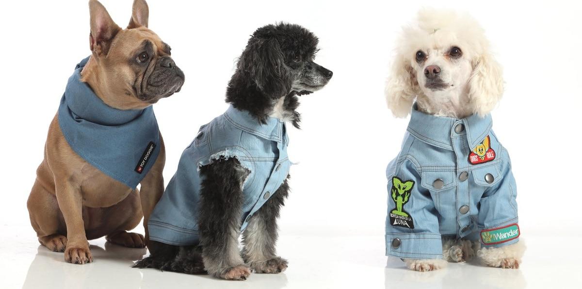 """Toy Doggie presenta su más reciente colección """"Furry Blues"""""""