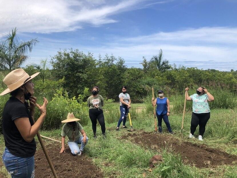 La comunidad escolar de la Concepción Pérez ha recibido talleres sobre  viveros, polinizadores y construcción de huertos, entre otros.
