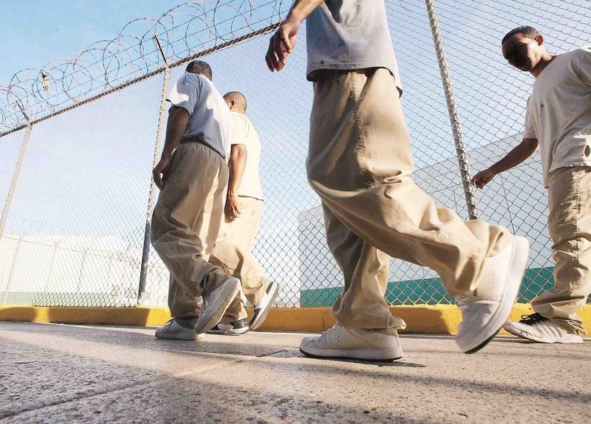 La iniciativa arrancará con 40 confinados que cumplirán su sentencia en menos de un año y tres meses. (GFR Media)