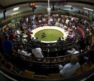 Galleros de Puerto Rico abogan ante jueces de Boston contra la prohibición federal