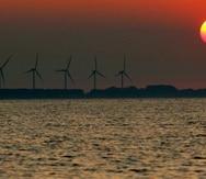Desde 2010, el costo de la energía eólica ha caído un 49% y el de la energía solar se ha desplomado un 85%. (EFE)