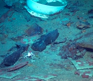 En duda los planes de recuperar transmisor de radio del Titanic