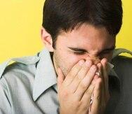 Los efectos directos de las esporas de hongo en el ser humano son asmas y alergias.