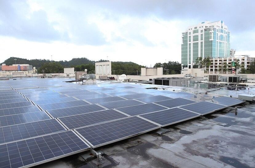 Muchas empresas han optado por instalar placas solares para reducir su consumo de combustibles fósiles y aumentar su sostenibilidad.