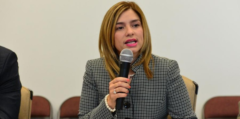 Liza García said that among those aspects in which the CEE is still working, there is the setting of the machines that will make the electronic ballot count and the confection of the purchase. (Archivo GFR Media)