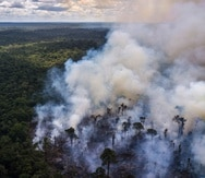 Humo sobre la Amazonía, cerca de una reserva indígena en el estado de Roraima, Brasil, enero de 2019.